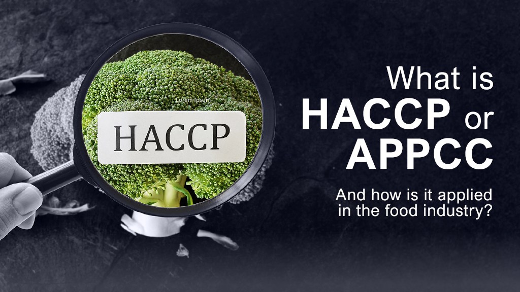 What is HACCP or HACCP and how is it applied in food industries?